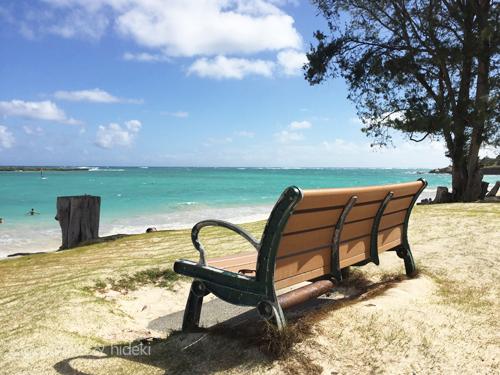 ハワイ一幸せなベンチ
