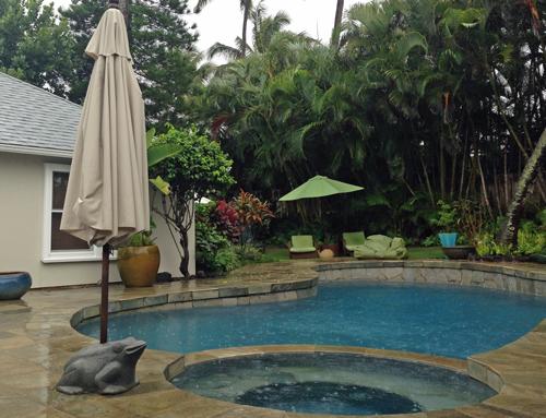 雨の日の中庭(ハワイにて)