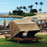 日帰りで楽しむ、アウラニ・ディズニー・リゾート! in ハワイ
