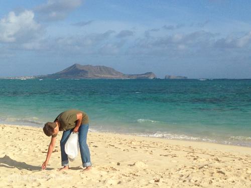 ラニカイビーチの掃除