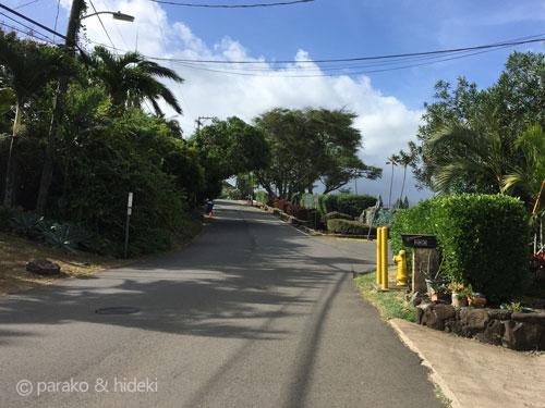 ハワイ ピルボックストレイル入り口までの道