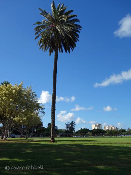 カピオラニ公園(ハワイ)
