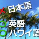 ハワイは英語が話せなくても大丈夫はウソ!日本語が通じないなら対策はコレ!