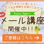 パラ子&ヒデキの「2つの無料メール講座」配信中!