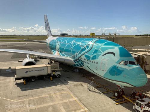 フライングホヌ(ANA A380 2号機)