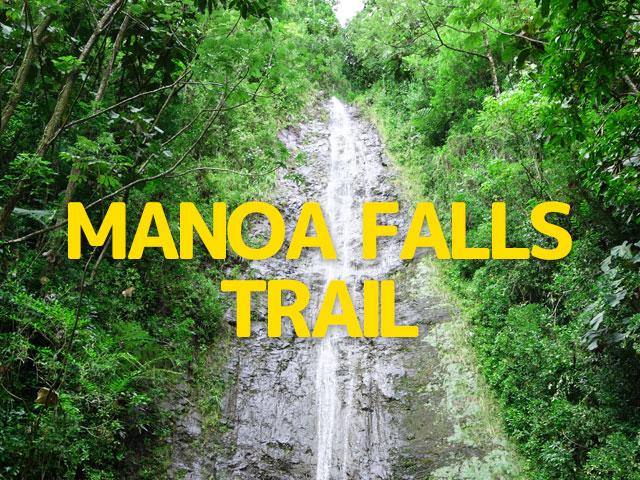 マノアの滝トレイル(ハワイ)