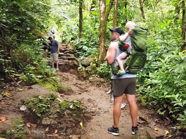 マノアの滝トレイル 赤ちゃん連れ