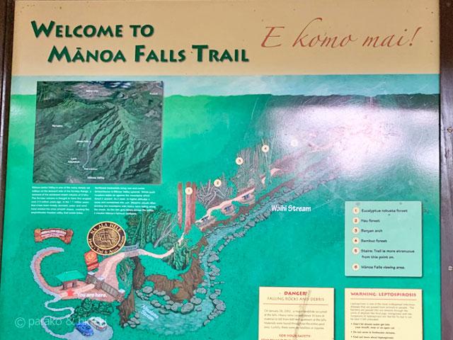 マノアの滝トレイル